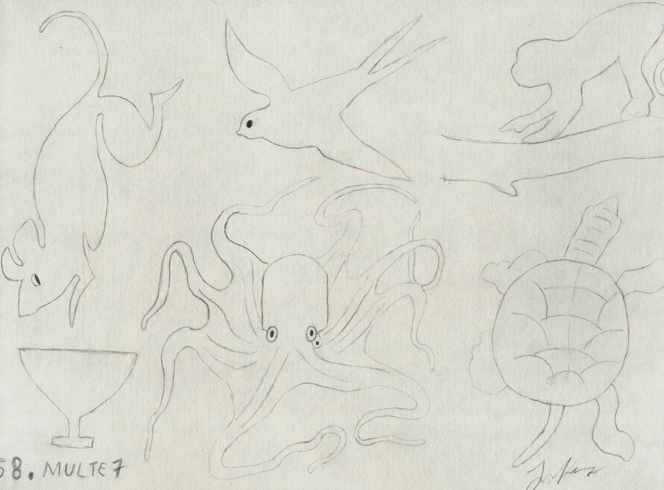 Desene cu animale, caracatita, soarece, testoasa