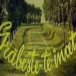 poster film Grabeste-te incet 1980