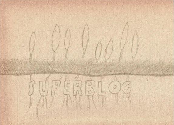 superblog spring 2016 logo