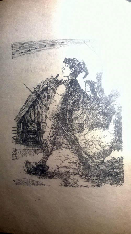 Niles Holgersen ilustratie carte