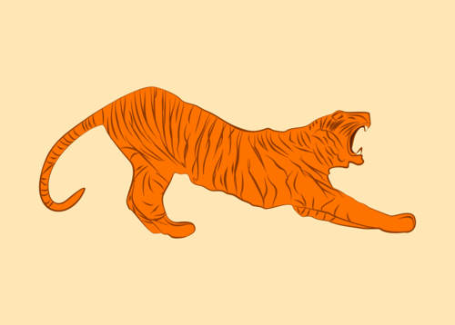 Tiger vector orange lazy