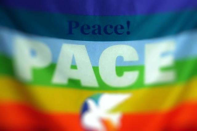 steagul pacii