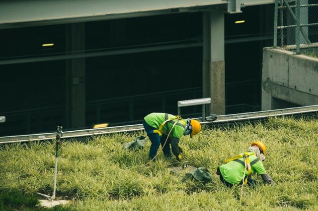 doi muncitori cu veste in iarba langa o cladire